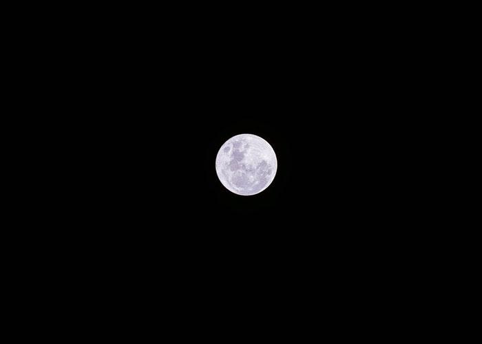 moon for Wayne