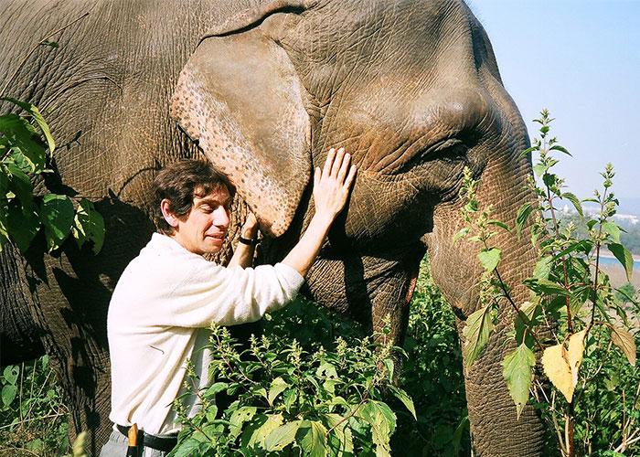 Sergei Solovyov. Elephant