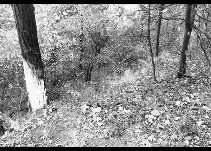 Gari Lait. From Those Ravines